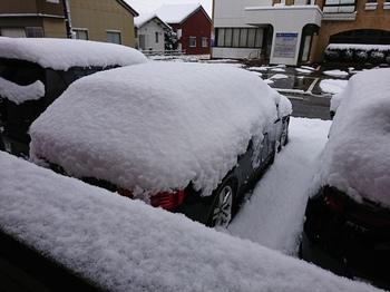 降雪3.JPG